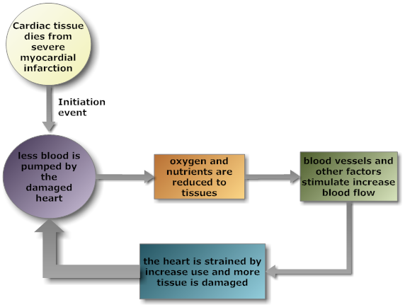 bupropion medical function