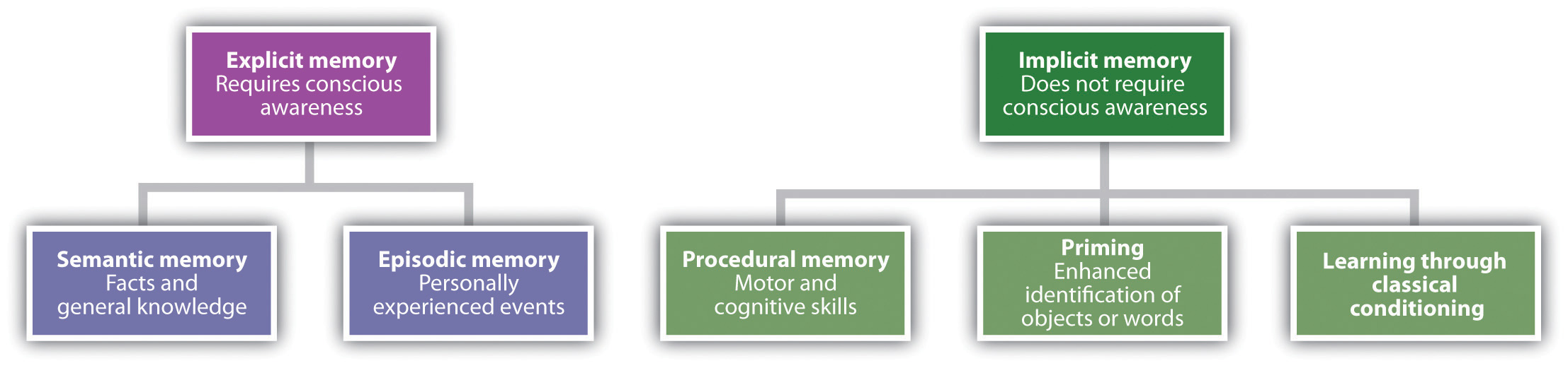 Implicit Learning Works Differently >> Memories As Types And Stages Intro To Psychology